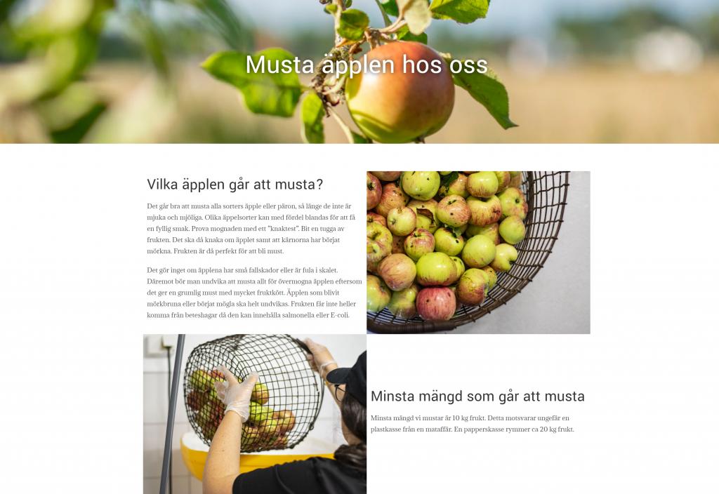 Skärmbild av Mobolets snygga och användarvänliga hemsida som är skapad av Fix-IT